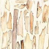 wood chips and plaster